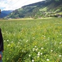Grünlandberatung verdoppelt die Wiesenerträge