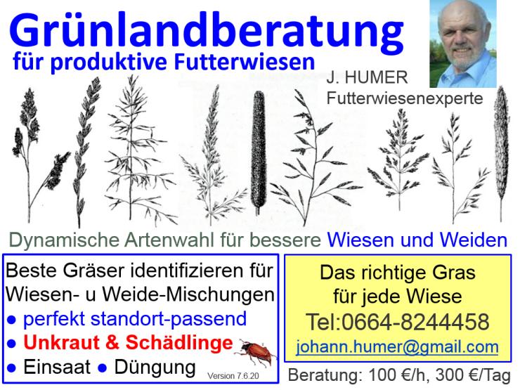 Grünland Expertenberatung vom Futterwiesenexperten HUMER –  Futterwiesenexperte HUMER